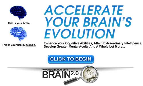 Brain 2.0 System